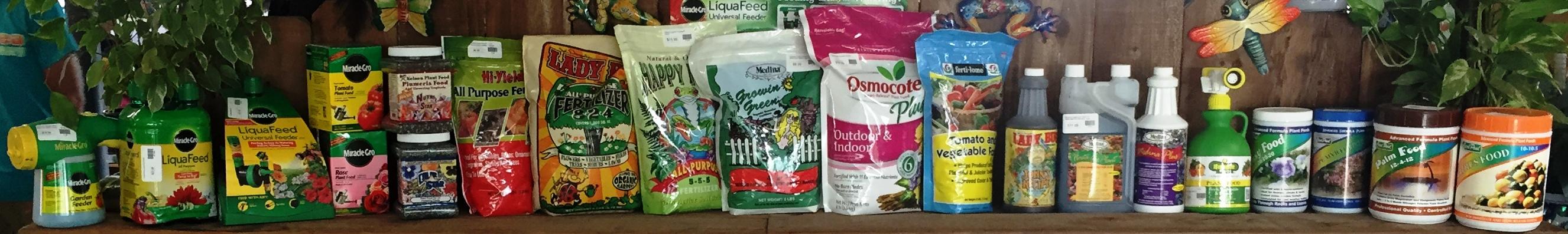 plant foods